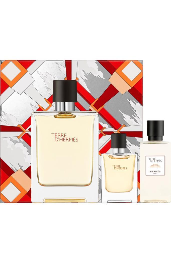 Hermes Terre D'Hermes EDT 100 ml Erkek Parfüm Seti