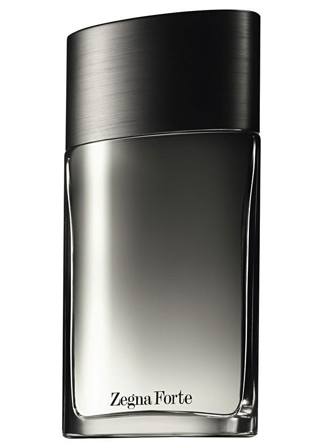 Ermenegildo Zegna Forte EDT 100 ml Erkek Parfüm